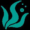 icone d'une algue