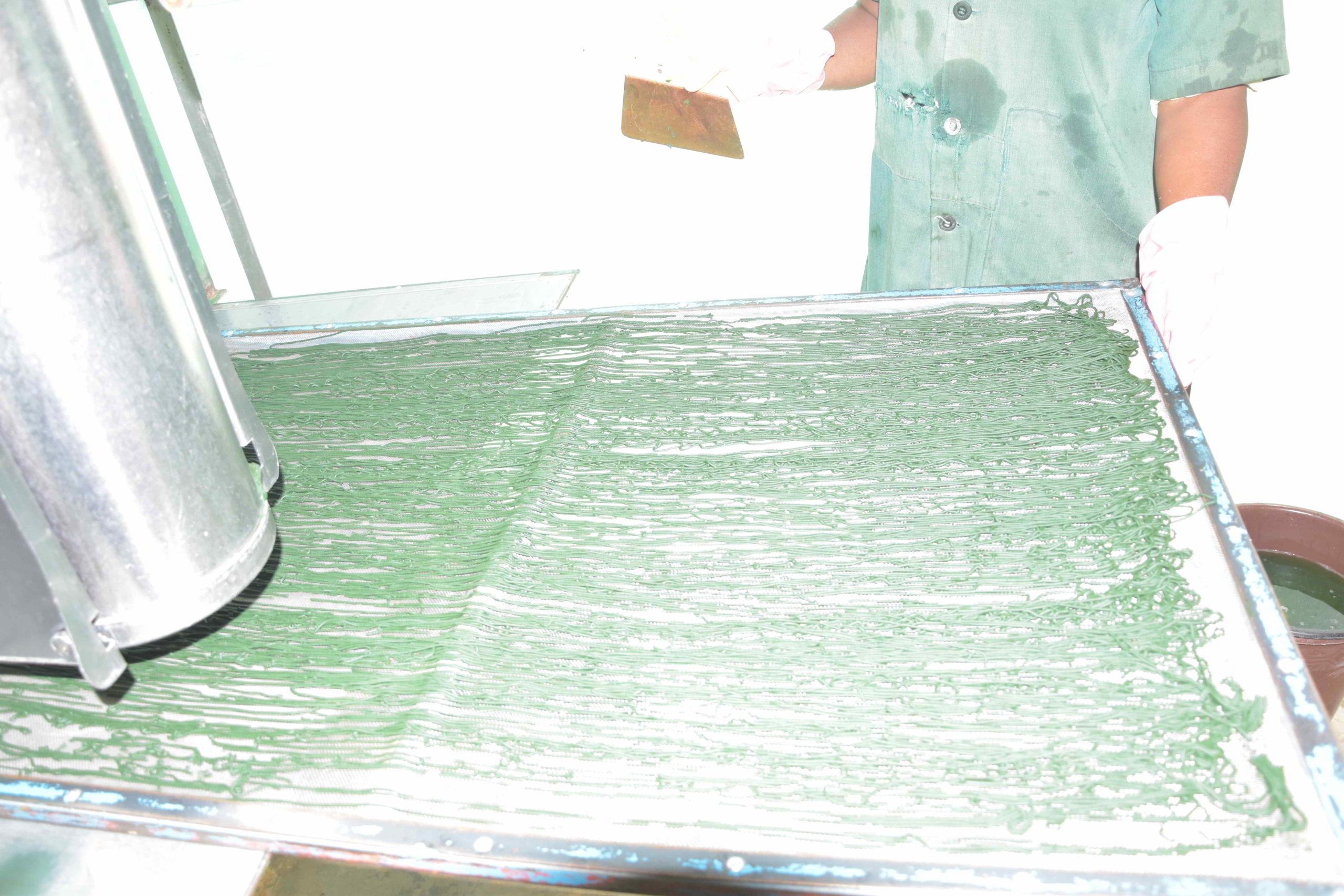photo de la spiruline mise en spaghetti